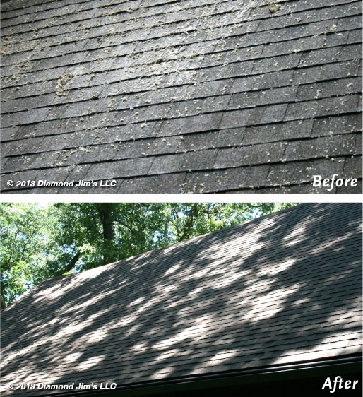 Roof Cleaning Moss Off Shingles