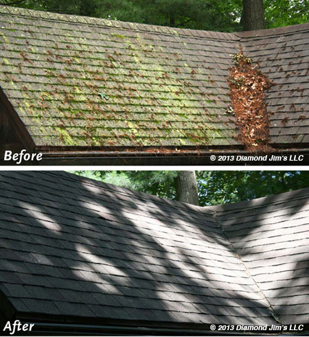 Roof-Cleaning-Moss