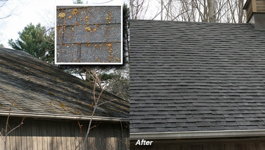Photo of roof cleaning, removal of moss and lichen, Branford, CT